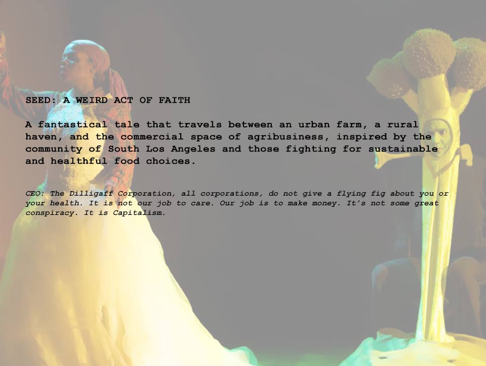 SEED: A WEIRD ACT OF FAITH